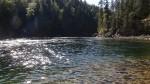 Shuswap River near Mabel Lake Farms