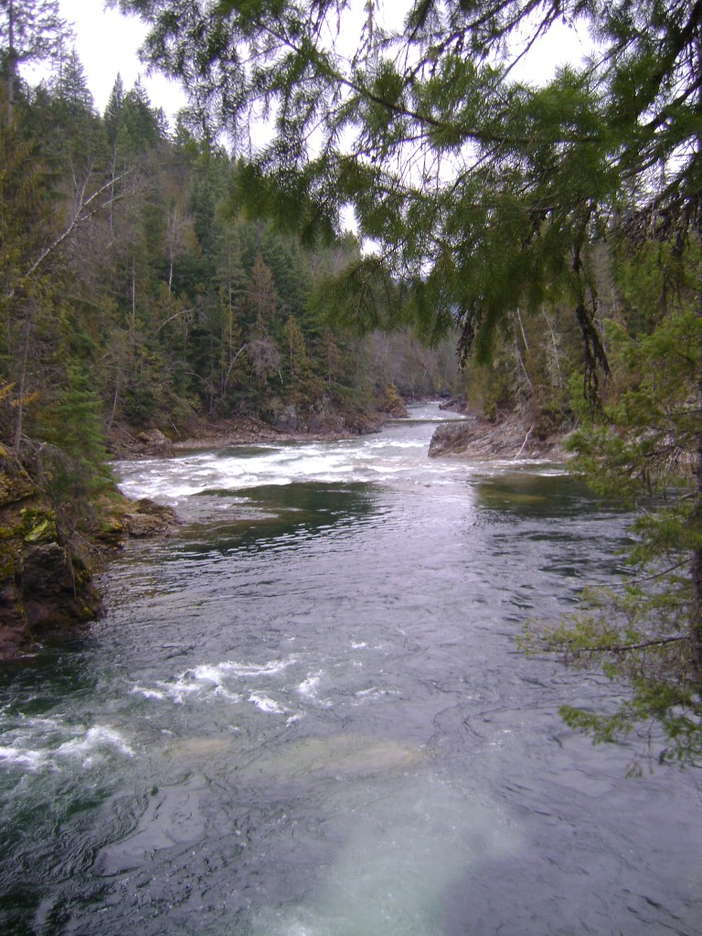 Shuswap River